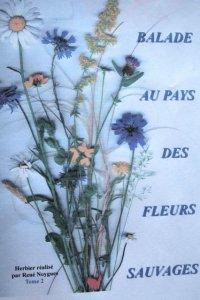 balade au pays des fleurs sauvages. - lot nature